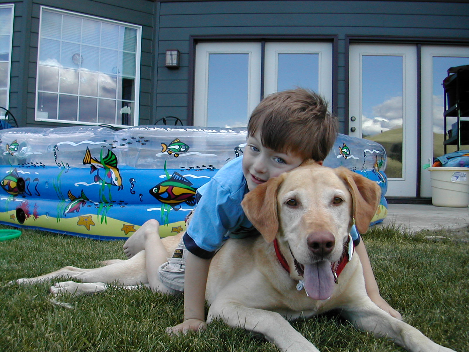 Family is important to me son and labrador picture
