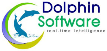 dolphin software logo design